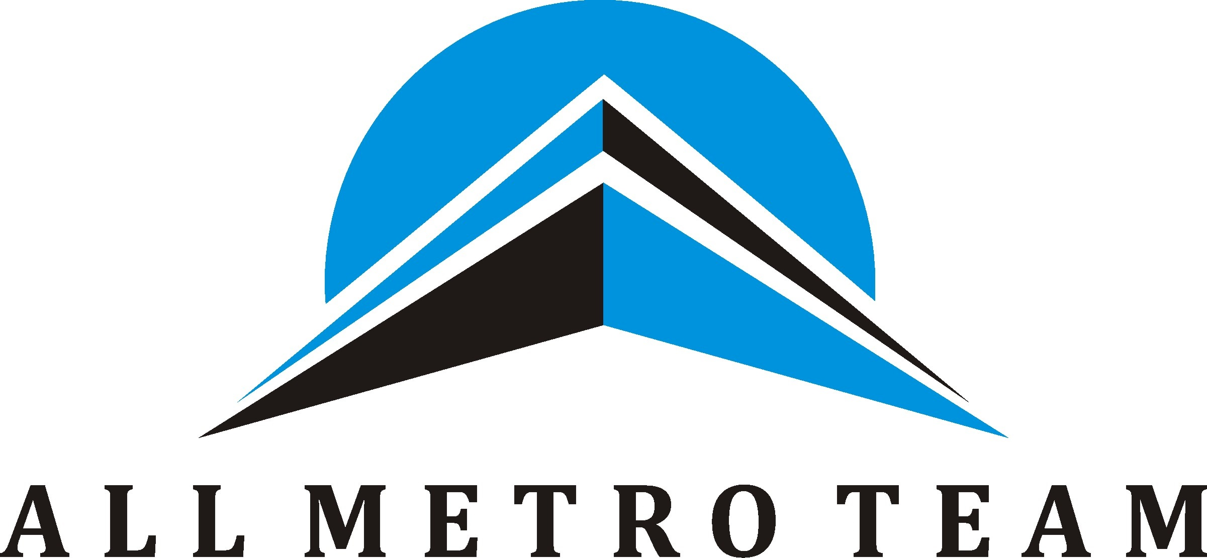 ALL METRO TEAM - logo